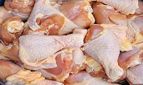 Chicken Legs Artwork